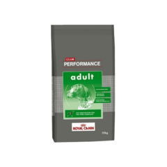 Performance perro adulto 20kg