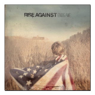 Rise Against - Endgame [LP]