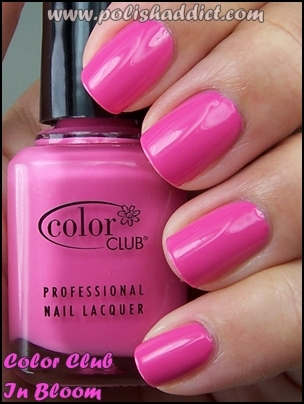 Color Club In Bloon
