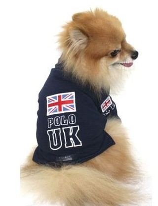 Camisa Pet Polo Uk #2  Pronta Entrega