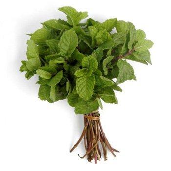Ingredientes, frutas, verduras e legumes. Hortela1-11f8ea99287122ecc115121899621405-640-0