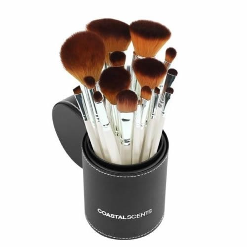 NEW Coastal Scents Pearl 16 Piece Brush Set