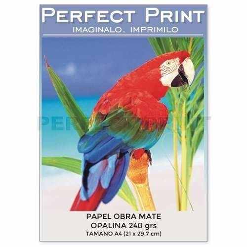 Papel Opalina A4 Grueso 125 Hojas 240 Grs Mate Chambril