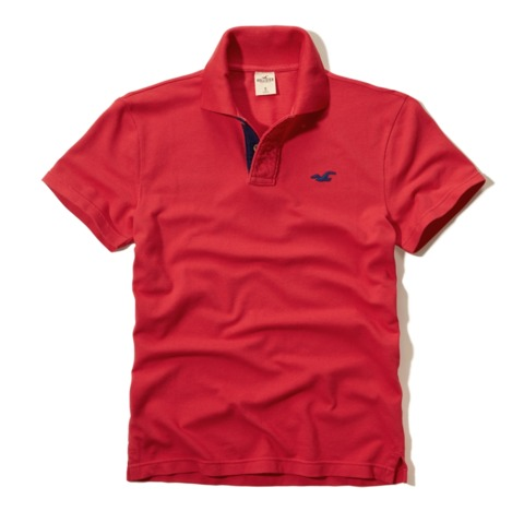 Polo Masculina Hollister