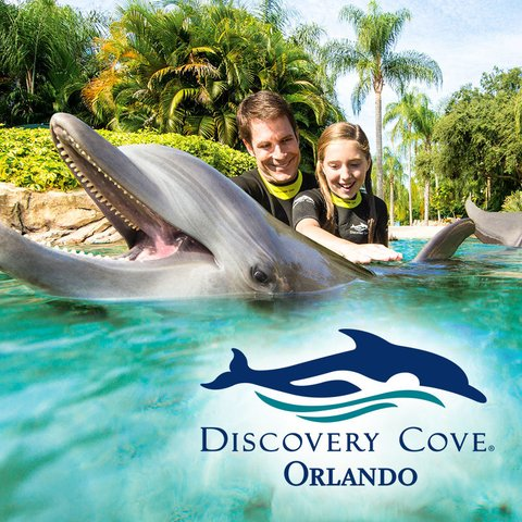 Ingressos Discovery Cove - Day Resort Package 2018 (COM SEA WORLD + AQUATICA)