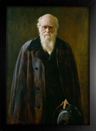 Imagem do Collier - Portrait of Charles Robert Darwin