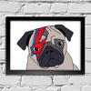 Poster David Bowie - Pug