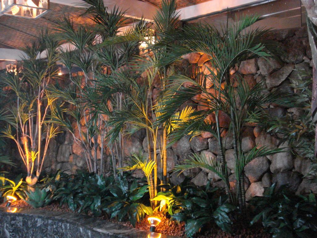 plantas jardim tropical:Jardim Tropical