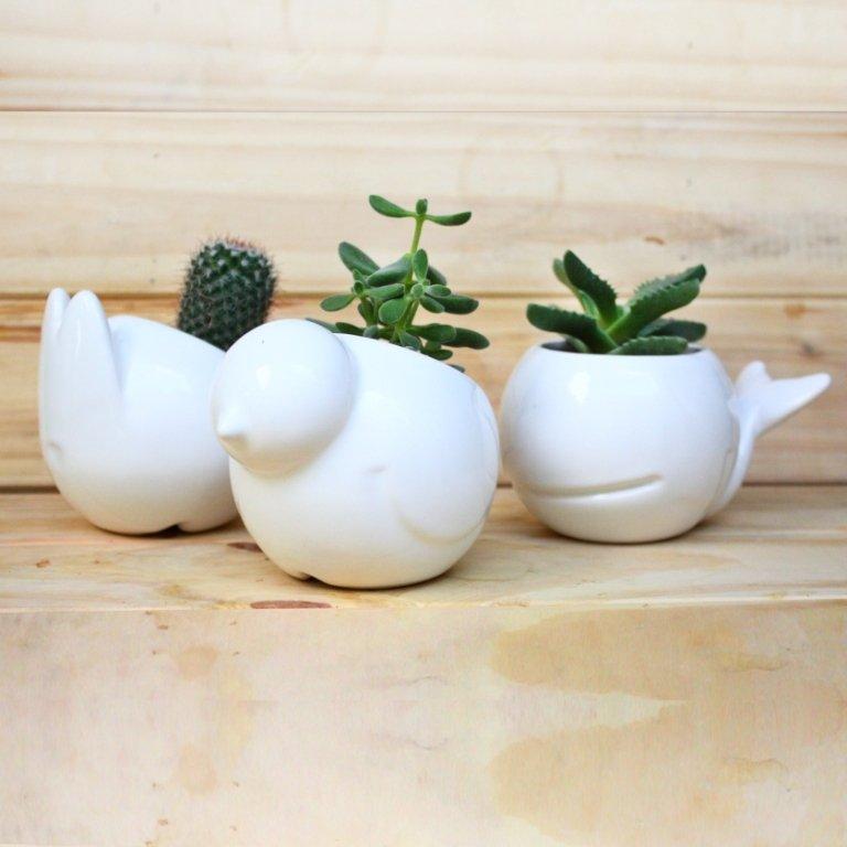 Macetas animales ideales para cactus y suculentas for Objetos decoracion