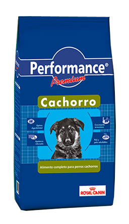 Royal Canin Performance Cachorro