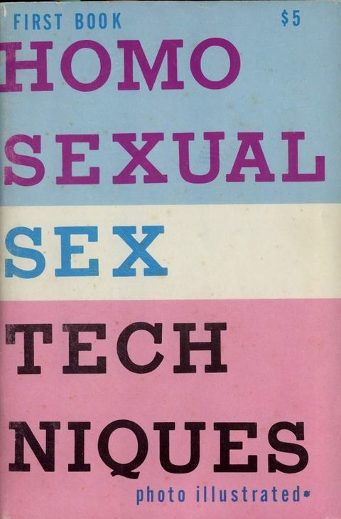 Homosexual Sex Techniques - First Book