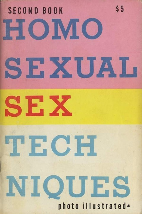 Homosexual Sex Techniques - Second Book