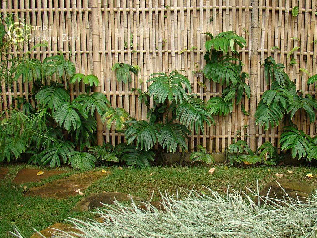 Para Cerca Cerca De Bambu Cerca Decorativa De Bambu Cerca De Jardim