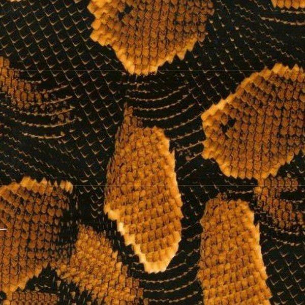 Película de Water Transfer Printing - Pele de Cobra Amarela 50cm x 2m