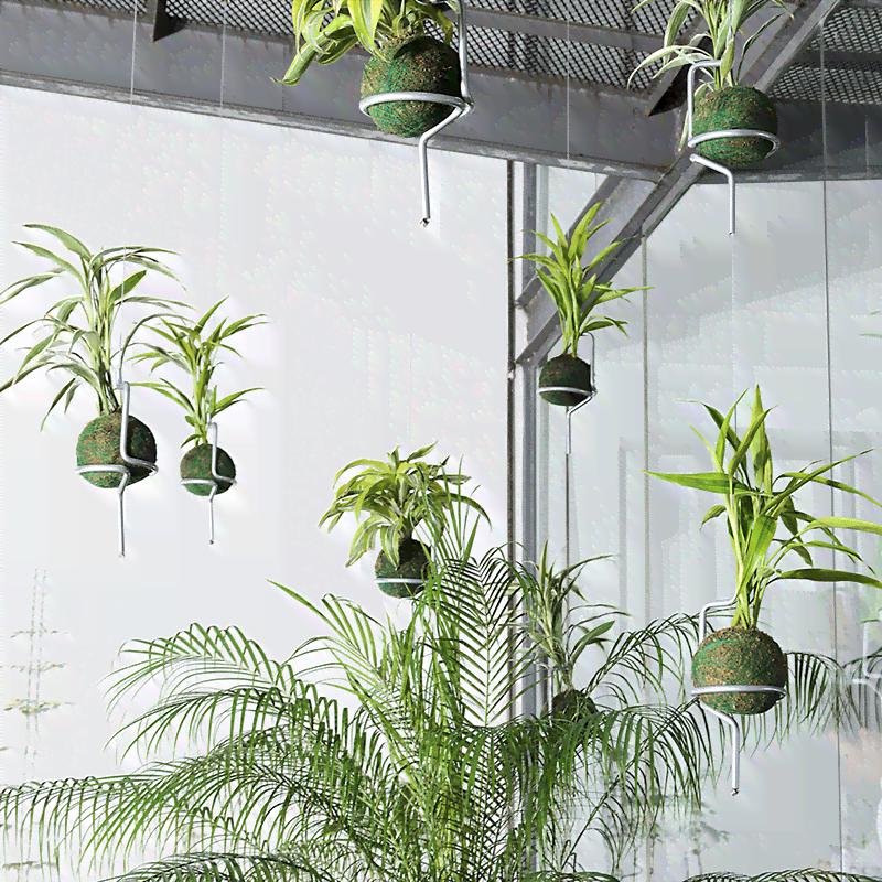 Soporte Colgante Individual Para Plantas Kokedamas