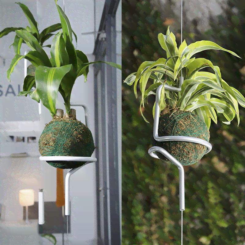 Soporte colgante individual para plantas kokedamas - Plantas colgantes de exterior ...