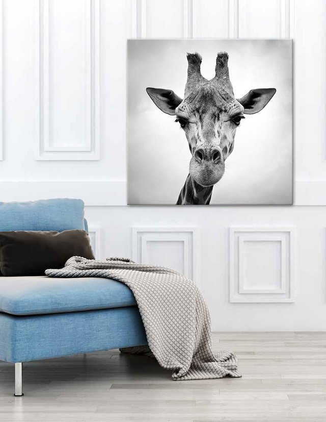 Girafa - Cuadro enmarcado o de lienzo / tela