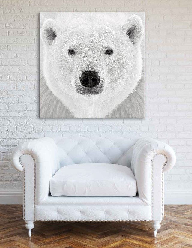 Oso Polar - Cuadro enmarcado o de lienzo / tela