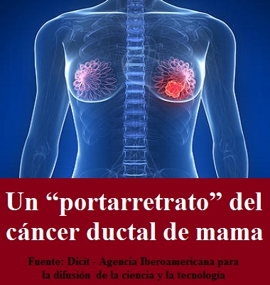 "Un ""portarretrato"" del cáncer ductal de mama"