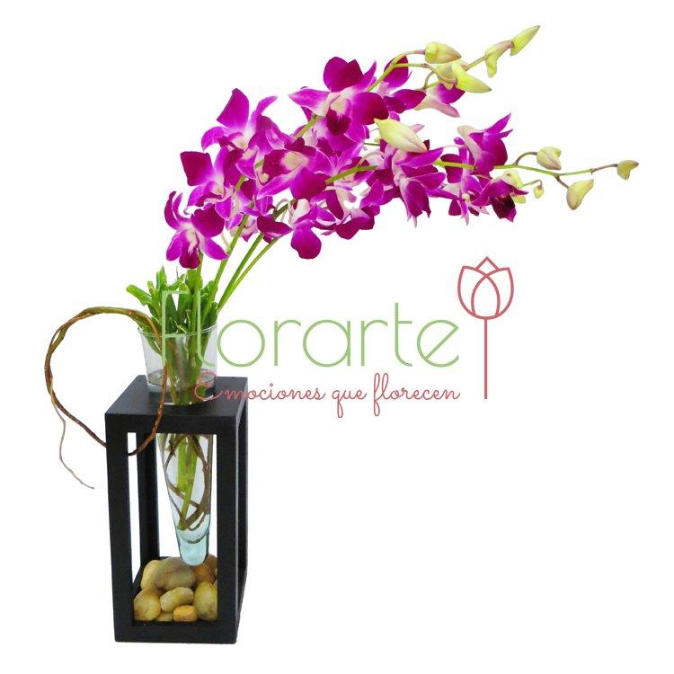 Arreglo Babel Orquídeas Media Luna
