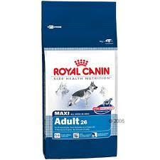Royal Canin Maxi Adulto x 15kg