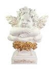 8950 - ANJO FLORET COLLECTION EDI.GOLD 49CM - comprar online