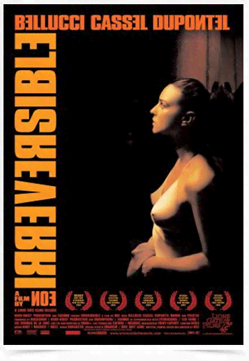 Poster Cinema Filme Irreversible