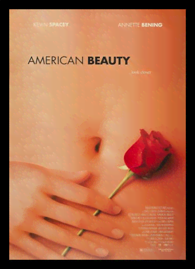 Quadro Poster Cinema Filme American Beauty