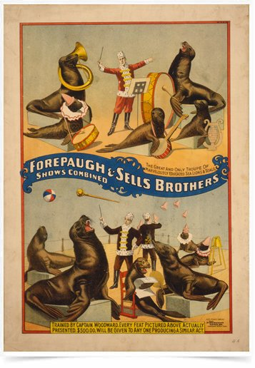 Poster Propaganda Forepaugh e Sells Brothers