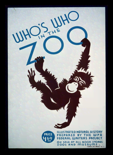 Quadro Poster Natureza Whos Who In The Zoo