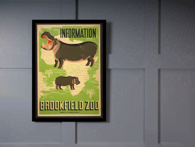 Quadro Poster Natureza Brookfield Zoo Information - comprar online