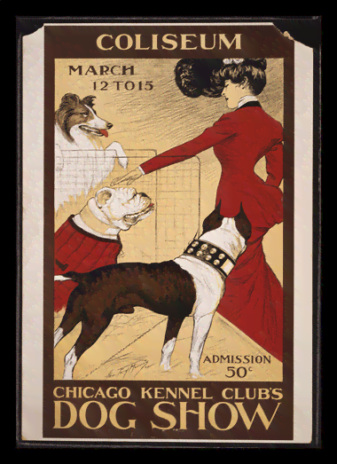 Quadro Poster Natureza Chicago Kennel Clubs