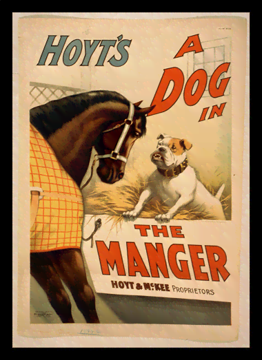 Quadro Poster Natureza Hoyts a Dog In The Manger