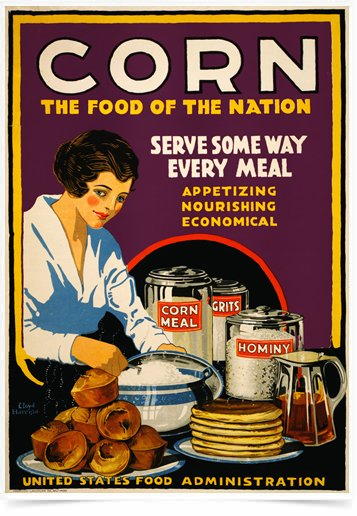 Poster Cozinha Corn The Food Of The Nation