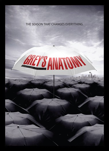Quadro Poster Series Greys Anatomy 3