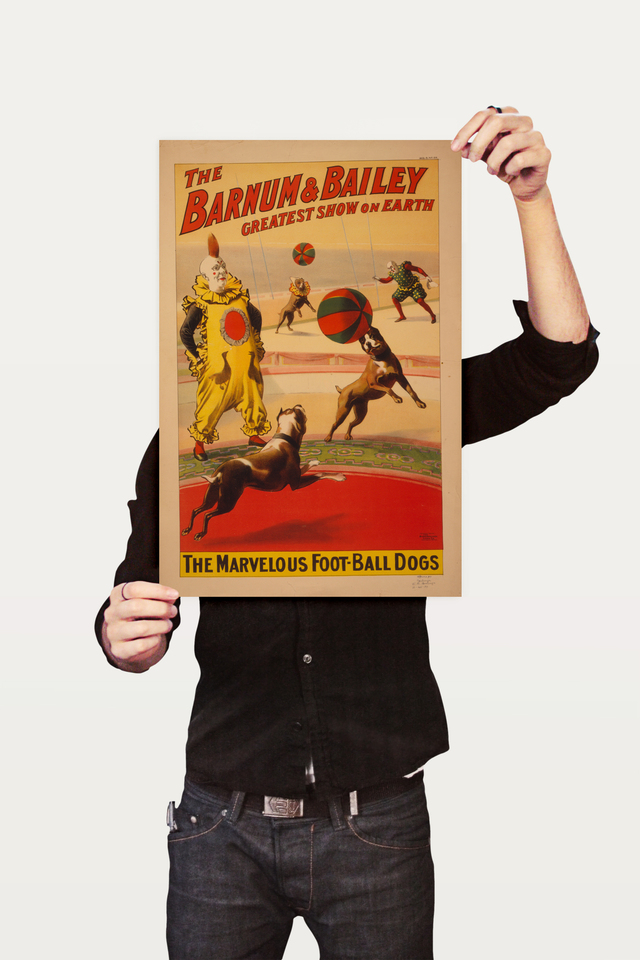 Poster Cinema The Barnum e Bailey Dogs - loja online
