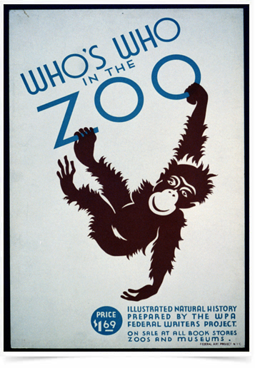 Poster Natureza Whos Who In The Zoo