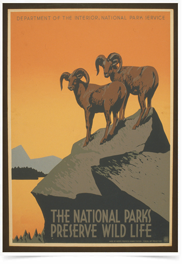 Poster Natureza The National Parks