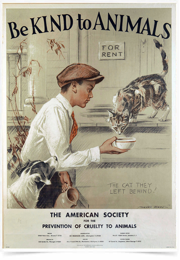 Poster Propaganda Be Kind to Animals Boy