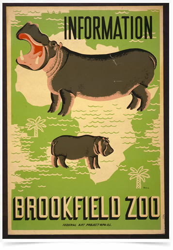 Poster Natureza Brookfield Zoo Information