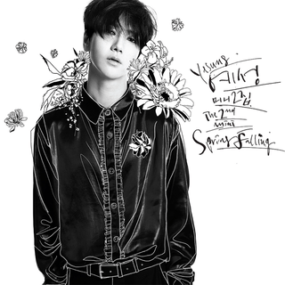 YESUNG - 2nd Mini Album [SPRING FALLING]