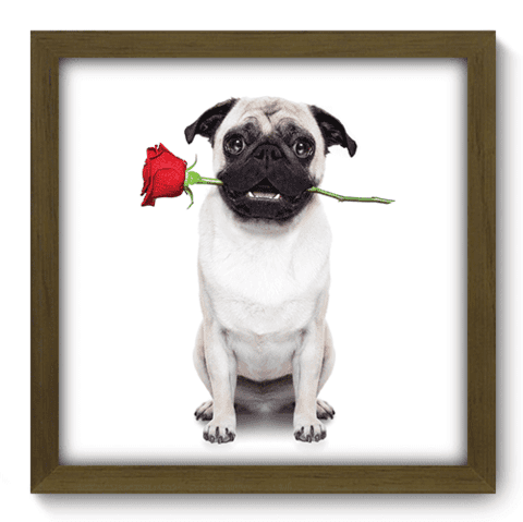 Quadro Decorativo - Dog - 029qdom