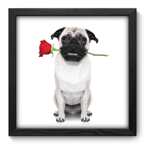 Quadro Decorativo - Dog - 029qdop