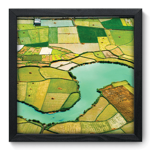 Quadro Decorativo - Campos de Arroz - 033qdpp