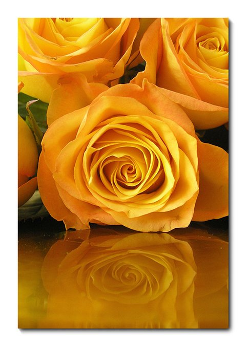 Placa Decorativa - Flor - 0349plmk