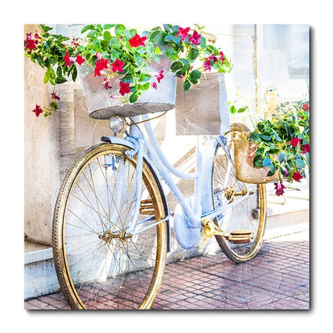 Placa Decorativa - Bicicleta - 0471plmk