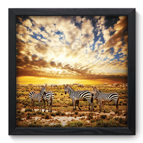 Quadro Decorativo - Savana - 052qdpp