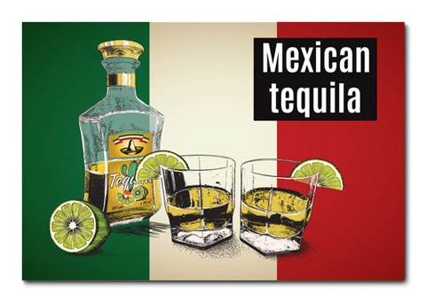 Placa Decorativa - Tequila - 0688plmk