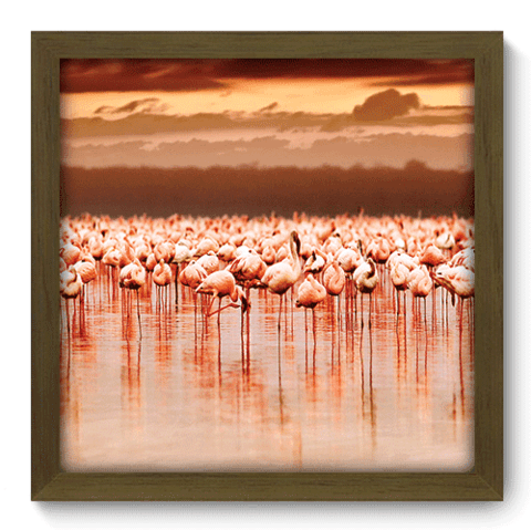 Quadro Decorativo - Flamingo - 128qdsm