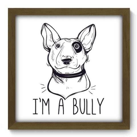 Quadro Decorativo - Bully - 135qdsm